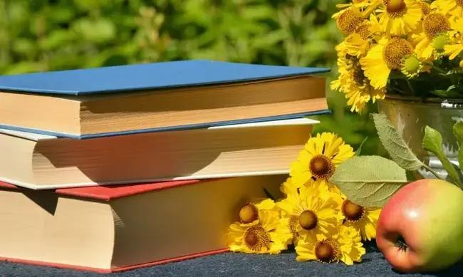 Mutlaka Okunması Gereken 100 Öykü Kitabı